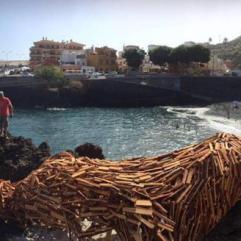 uigi Stinga termina la recolocación de su lagarto en la playa de Garachico. Foto: laopinion.es